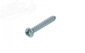 Schraube für Simson Blinkerkappen - 3,9x22