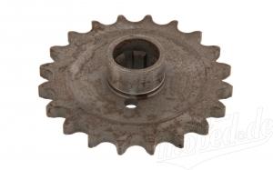 Kettenrad am Getriebe 20 Zähne TS 250